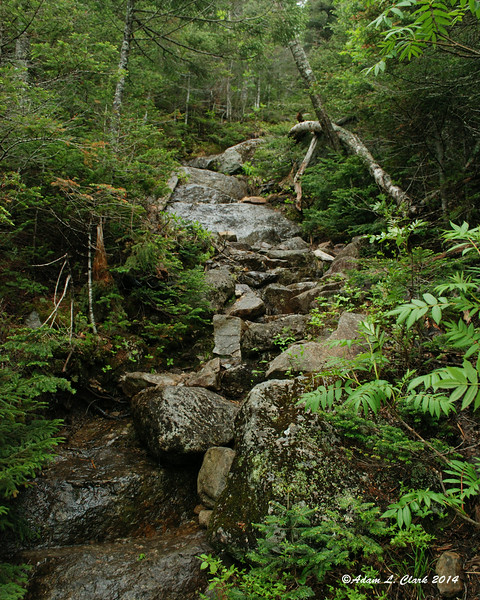The top of the Fire Warden's Trail is steep with many stone steps in place along the way.  The trail drops 1,400 feet in just under a mile
