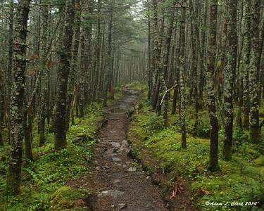 Bigelow West Peak & Avery Peak (8-9 of 67)