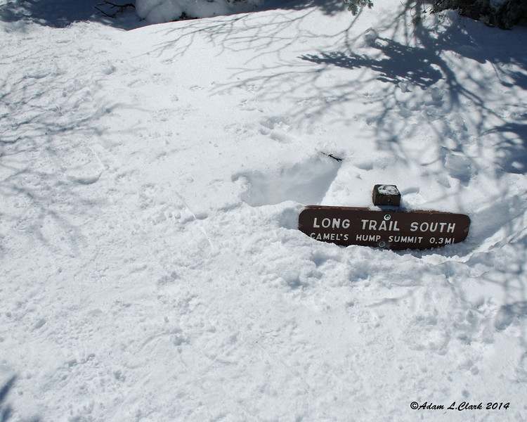 The sign for the Long Trail heading south (and over the summit) from the clearing has been dug out a little in order to be able to see it.  Normally these signs are 4-5 feet off the ground at least
