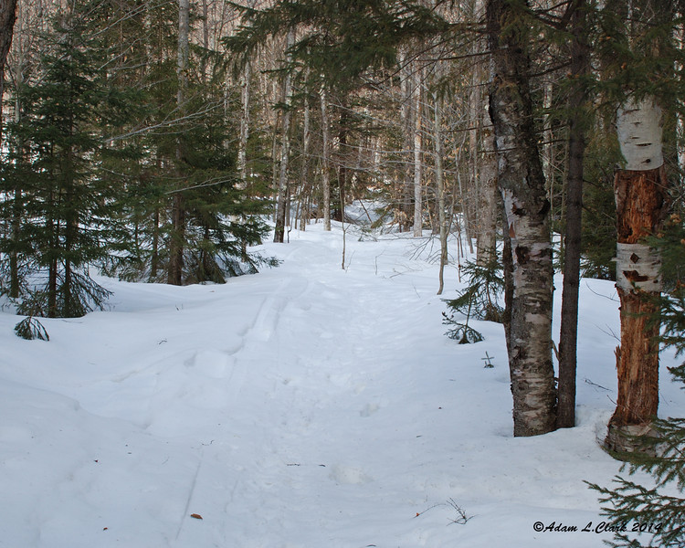 The start of the trail just after the summer trail head.  Conditions were well packed, but I put on my snowshoes here anticipating softening conditions with the warm temps and sun today