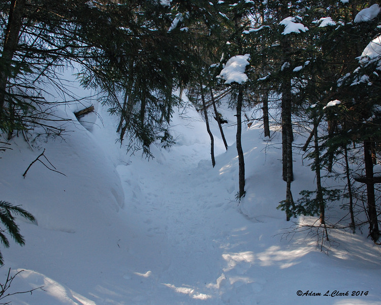After a brief section in the open hardwoods, the trail enters the conifers and into an area with an eroded base.  This made for cool temps out of the sun and walking between two walls of snow