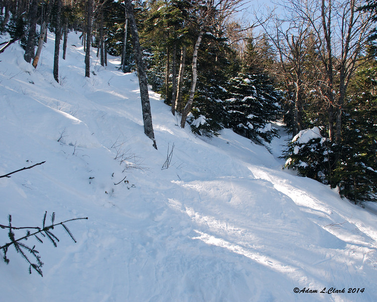 Another crossing of the ski trail.  The crossings were easy to follow with plenty of blazes on the trees