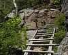 At the top of the ladder, there are a couple of boards on the side of the trail to help keep you from sliding back down