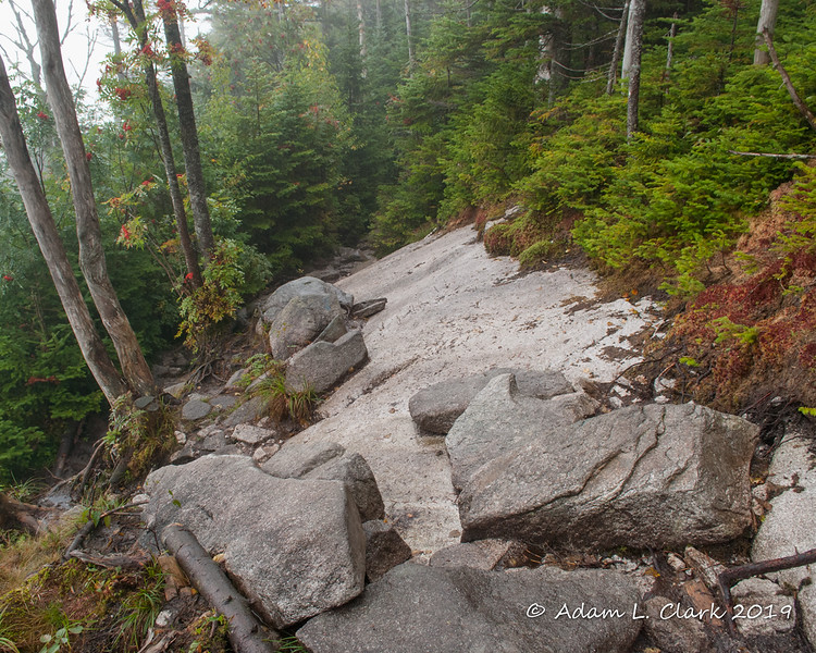 An open slab of rock along the trail.  A bit trickier today with all the moisture
