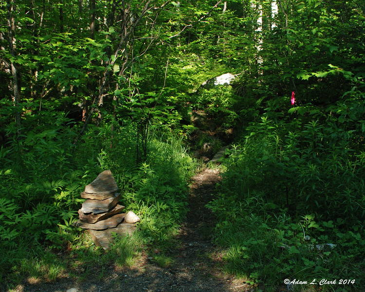 Where the trail crosses the road, there is a small cairn
