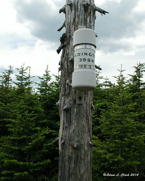 The summit canister.  Complete with inaccurate summit elevation.  This time only off by 26 feet.  I'm starting to sense a pattern in Maine