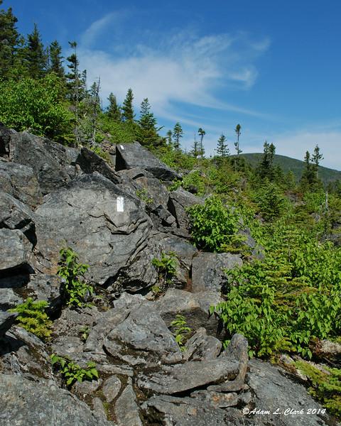 Some large rocks to negotiate around