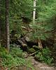 Small brook crossing