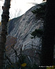 A small view of the cliffs on Cannon Mtn