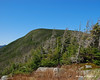 The summit of Galehead Mtn is just a short distance away on the Frost Trail from here