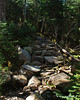 More rocks to climb up over just before the end of the Gale River Trail
