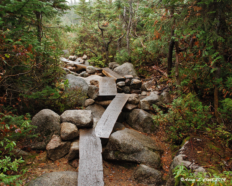 Some interesting bridges back on the Chimney Pond Trail