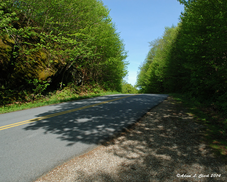 The trail crosses the road right at the high point