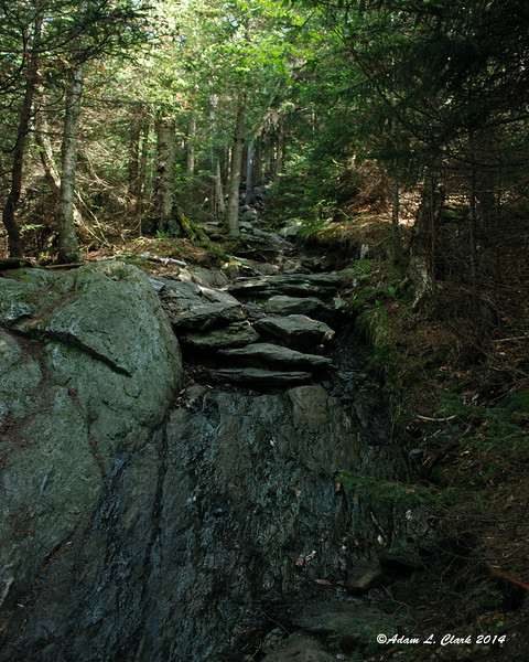 The trail as it starts to get a bit rocky and steeper