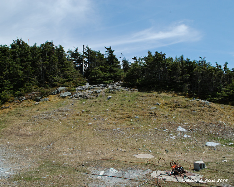 The high point of Mt. Lincoln is right next to the ski trail.  The summit platform can be seen partly in the trees