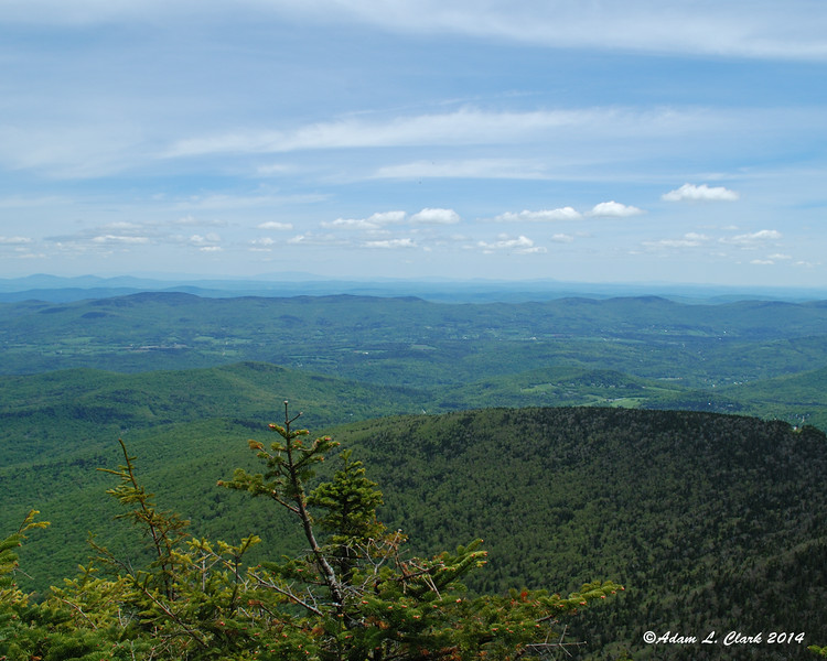 The limited view east over the trees from Cutts Peak