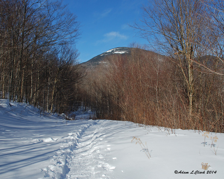 The southern portion of the Mt. Cabot summit lies ahead