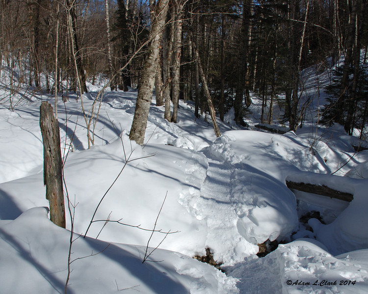 Down into the saddle of the notch, the trail crosses over multiple side paths from when water gets high