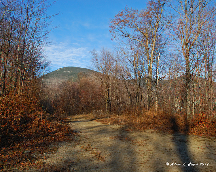 Looking up Bunnell Notch Trail to Mt. Cabot, The Bulge, and The Horn
