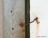 Very secure door lock
