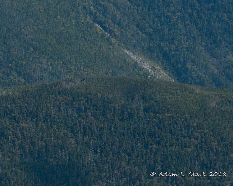 Galehead's flag could be seen above the trees.  Right near the base of the rock slide behind the summit