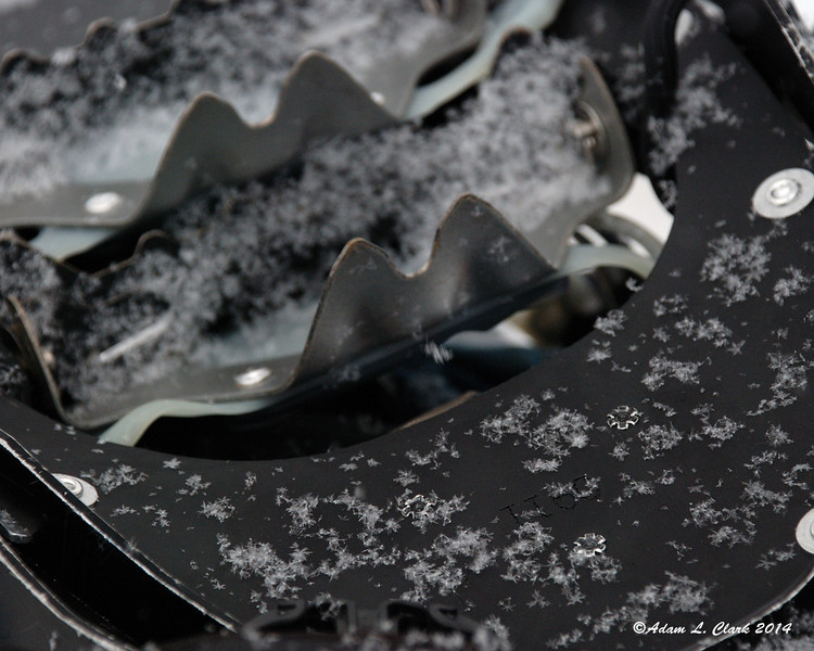 It started snowing on the drive to the hike this morning.  Here some snowflakes gather on my snowshoes as I take pictures