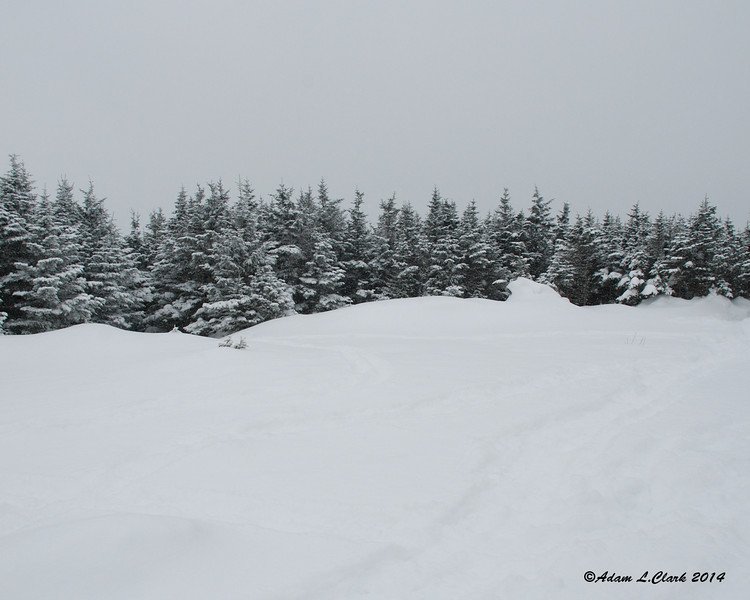 The summit has a pretty good sized open area.  The clouds and snow today make this already limited view non-existent today
