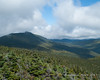 Looking north up Franconia Ridge, still in the clouds at the summits