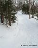 A short steep climb on the trail