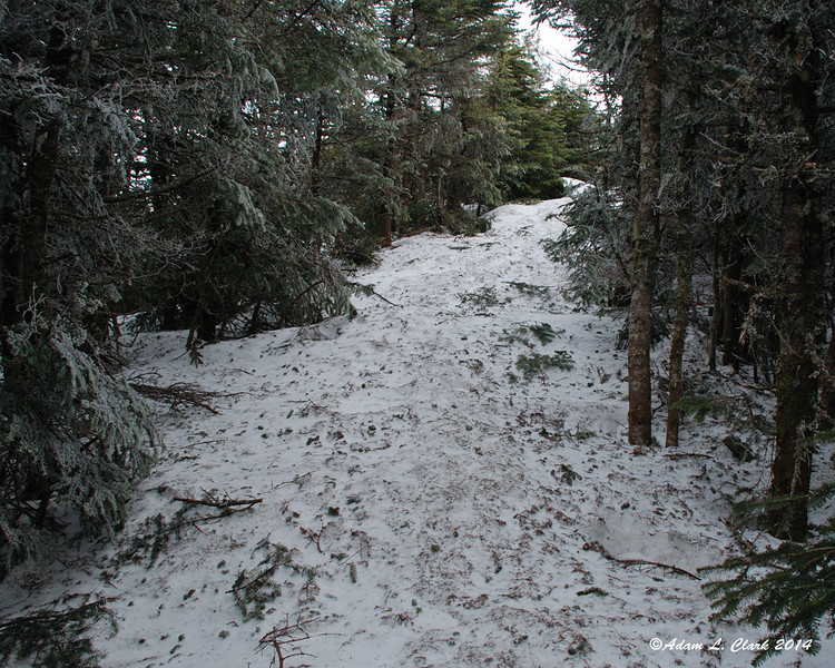 The deep snow along the Carriage Road