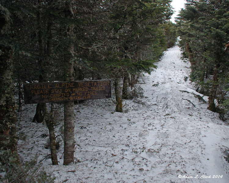A sign warning of fragile alpine vegetation