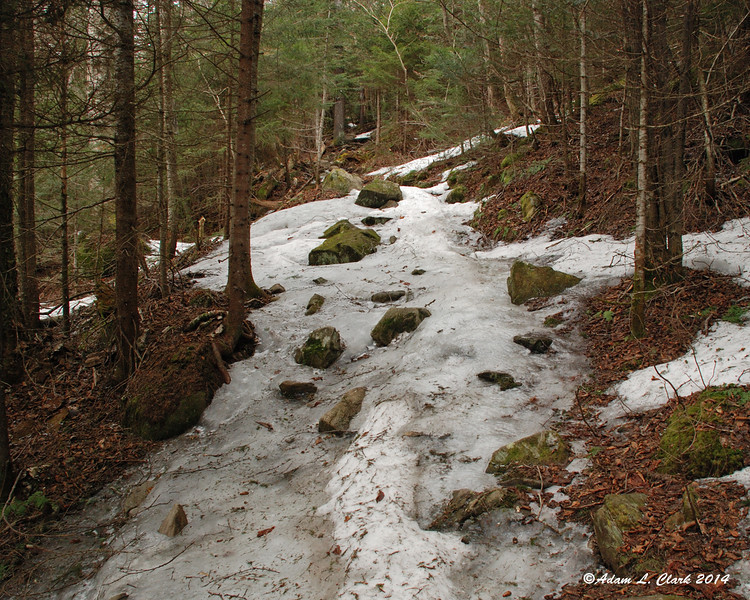 At approximately 2900 ft in elevation, the snow and ice started on the trail