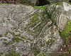 Patterns in the rocks