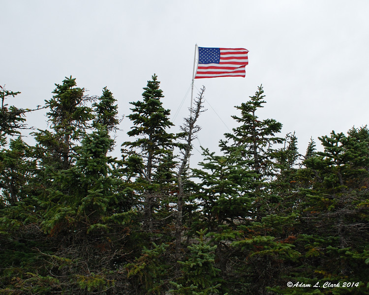 The flag flying behind some trees