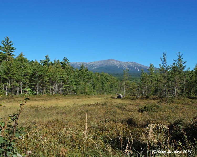 Mt. Katahdin behind a swamp along the park tote road
