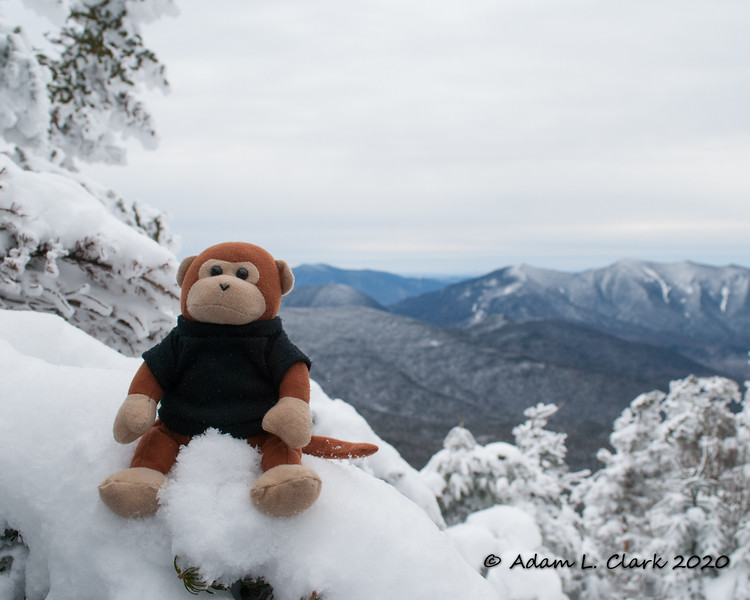 Miles the Mountain Monkey at the summit of North Hancock