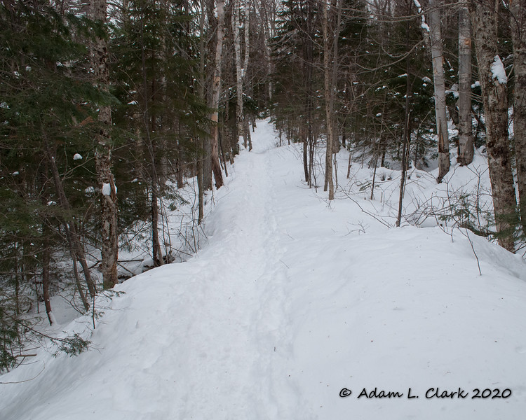 An early section of the Hancock Notch Trail.  Nice gentle grades as this follows an old railroad bed