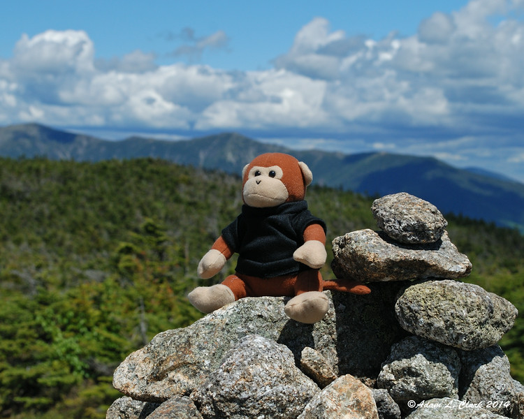 Miles takes in the view from the summit cairn
