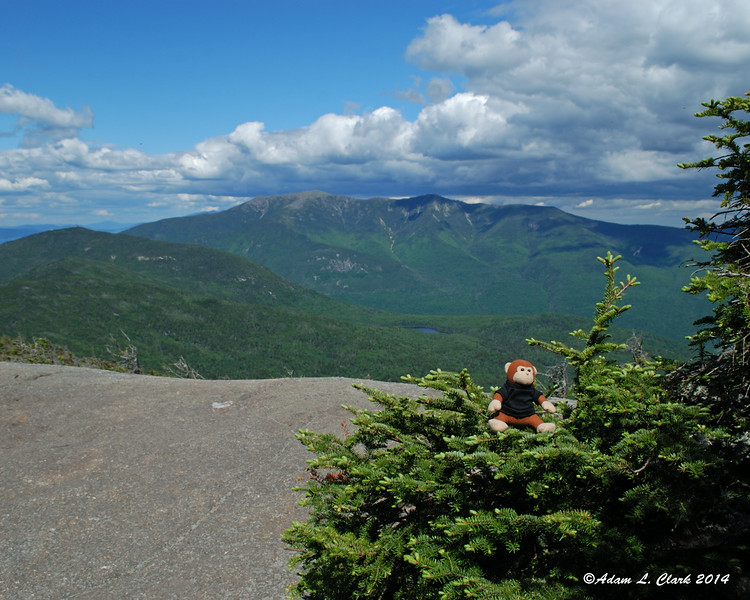 Miles in front of Franconia Ridge