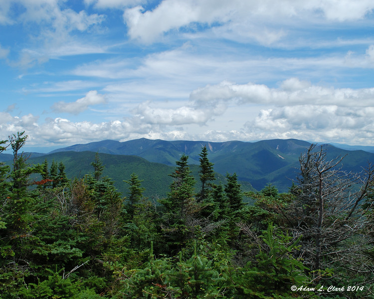 Looking over the trees at the Pemigewasset Wilderness