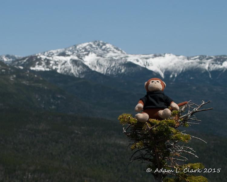 Miles with Mt. Washington behind him