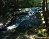 Lower Gordon Falls at a brook crossing