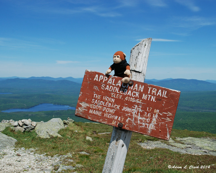 Miles hanging out on the summit sign
