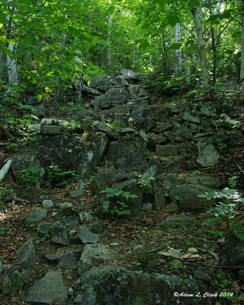 After an easy section slowly leading away from the river, the trail heads uphill more and gets rockier