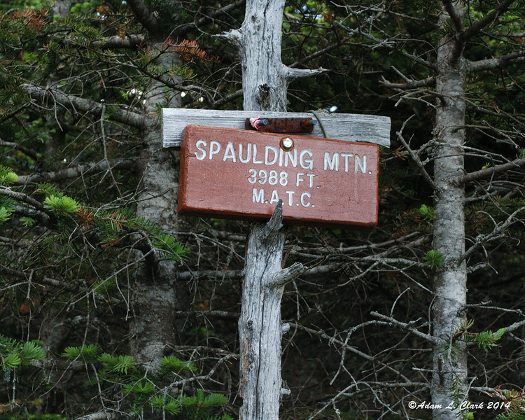A short side trail leads you up to the summit of Spaulding Mountain.  This summit sign is off by only 22 feet compared to the map.  At least all the discrepancies aren't big