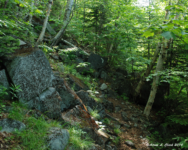 The trail follows a side hill before turning straight up it then back in the other direction along the side hill again