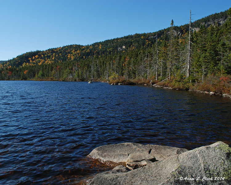 The northern shore of Ethan Pond