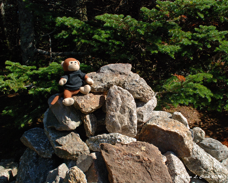 Miles on top of the summit cairn