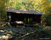The Ethan Pond Shelter.  All the tent sites were full and the shelter was full by the time I left