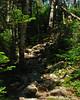 A short steep bit on the ridge just past Zeacliff Pond